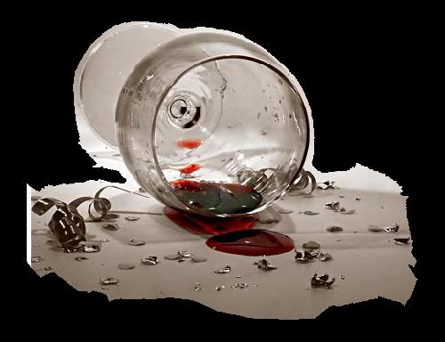 VIVRE SANS ALCOOL